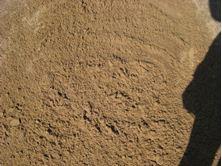 Bild på Manegesand